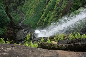 Highest waterfall in india